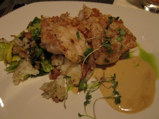 Macadamia grouper