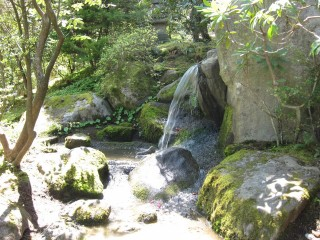 Japanese garden small waterfall
