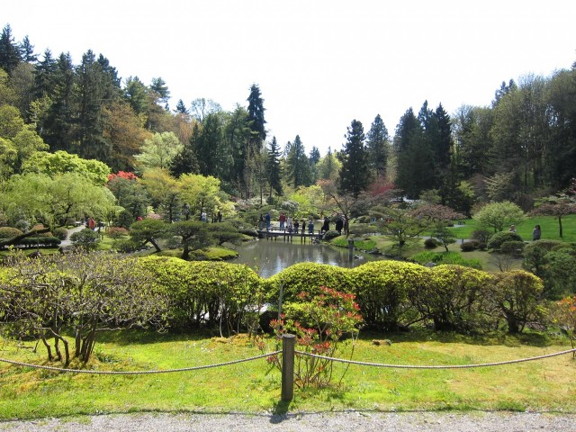 Wide view of Seattle Japanese garden