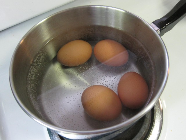 Trying new hard-boiled egg technique