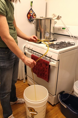 Draining the cooled wort 2